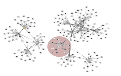 TouchGraph groups